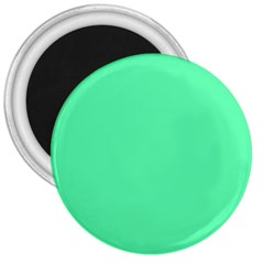 Neon Color   Light Brilliant Spring Green 3  Magnets by tarastyle