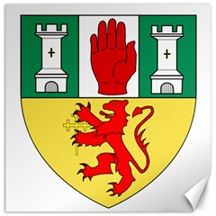 County Antrim Coat Of Arms Canvas 20  X 20   by abbeyz71