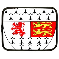 County Carlow Coat Of Arms Netbook Case (xl)  by abbeyz71