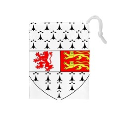 County Carlow Coat Of Arms Drawstring Pouches (medium)