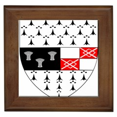 County Kilkenny Coat Of Arms Framed Tiles by abbeyz71