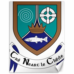 County Meath Coat Of Arms Canvas 12  X 16