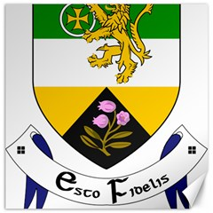 County Offaly Coat Of Arms  Canvas 12  X 12   by abbeyz71