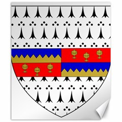 County Tipperary Coat Of Arms  Canvas 20  X 24   by abbeyz71