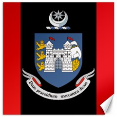 Flag Of Drogheda  Canvas 20  X 20   by abbeyz71