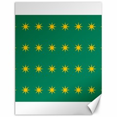 32 Stars Fenian Flag Canvas 12  X 16   by abbeyz71