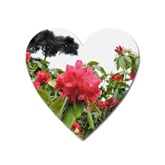 Virginia Waters Flowers Heart Magnet by DeneWestUK