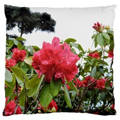 Virginia Waters Flowers Large Flano Cushion Case (one Side) by DeneWestUK
