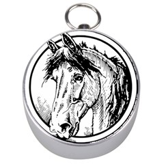 Framed Horse Silver Compasses by Nexatart