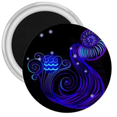 Sign Aquarius Zodiac 3  Magnets by Mariart