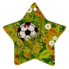 Ball On Forest Floor Ornament (star) by linceazul