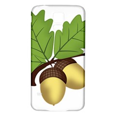 Acorn Hazelnuts Nature Forest Samsung Galaxy S5 Back Case (white)