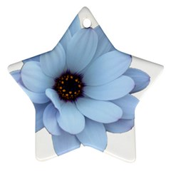 Daisy Flower Floral Plant Summer Ornament (star) by Nexatart