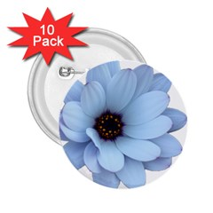 Daisy Flower Floral Plant Summer 2 25  Buttons (10 Pack)  by Nexatart