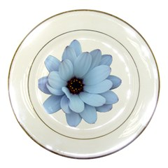 Daisy Flower Floral Plant Summer Porcelain Plates by Nexatart