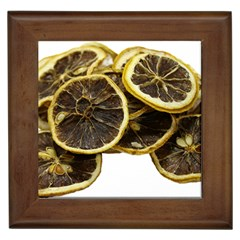 Lemon Dried Fruit Orange Isolated Framed Tiles by Nexatart