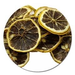 Lemon Dried Fruit Orange Isolated Magnet 5  (round) by Nexatart
