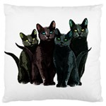 Cats Large Cushion Case (One Side) Front