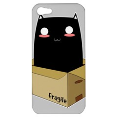 Black Cat In A Box Apple Iphone 5 Hardshell Case by Catifornia