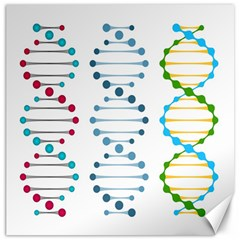 Genetic Dna Blood Flow Cells Canvas 12  X 12   by Mariart