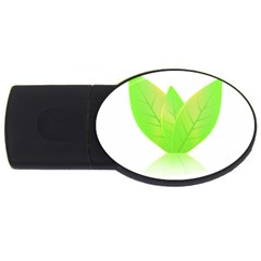 Leaves Green Nature Reflection Usb Flash Drive Oval (4 Gb)