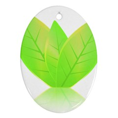 Leaves Green Nature Reflection Oval Ornament (two Sides) by Nexatart