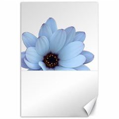 Daisy Flower Floral Plant Summer Canvas 24  X 36  by Nexatart