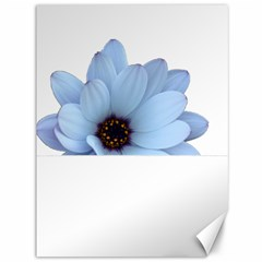Daisy Flower Floral Plant Summer Canvas 36  X 48   by Nexatart