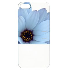 Daisy Flower Floral Plant Summer Apple Iphone 5 Hardshell Case With Stand by Nexatart