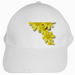 Flowers Spring Yellow Spring Onion White Cap by Nexatart