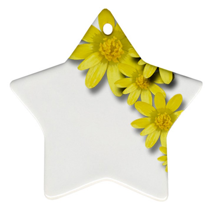 Flowers Spring Yellow Spring Onion Ornament (Star)