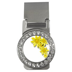 Flowers Spring Yellow Spring Onion Money Clips (cz)  by Nexatart