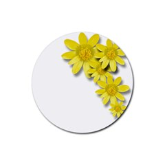 Flowers Spring Yellow Spring Onion Rubber Coaster (round)