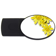 Flowers Spring Yellow Spring Onion Usb Flash Drive Oval (2 Gb) by Nexatart
