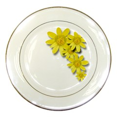 Flowers Spring Yellow Spring Onion Porcelain Plates by Nexatart
