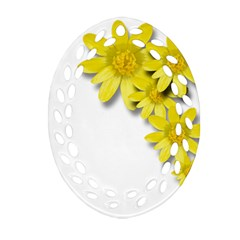 Flowers Spring Yellow Spring Onion Oval Filigree Ornament (two Sides) by Nexatart