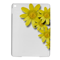 Flowers Spring Yellow Spring Onion Ipad Air 2 Hardshell Cases by Nexatart