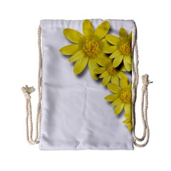 Flowers Spring Yellow Spring Onion Drawstring Bag (small) by Nexatart