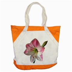 Flower Blossom Bloom Amaryllis Accent Tote Bag by Nexatart