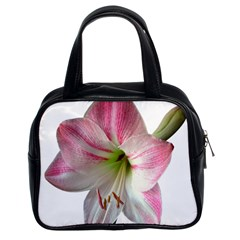 Flower Blossom Bloom Amaryllis Classic Handbags (2 Sides) by Nexatart