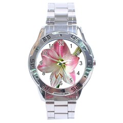 Flower Blossom Bloom Amaryllis Stainless Steel Analogue Watch by Nexatart