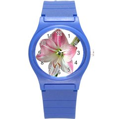 Flower Blossom Bloom Amaryllis Round Plastic Sport Watch (s) by Nexatart
