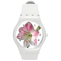 Flower Blossom Bloom Amaryllis Round Plastic Sport Watch (m) by Nexatart