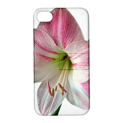 Flower Blossom Bloom Amaryllis Apple Iphone 4/4s Hardshell Case With Stand by Nexatart