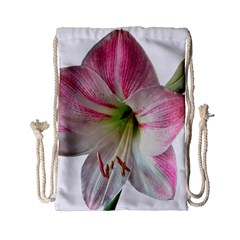 Flower Blossom Bloom Amaryllis Drawstring Bag (small) by Nexatart