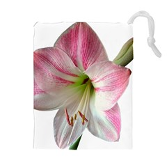 Flower Blossom Bloom Amaryllis Drawstring Pouches (extra Large) by Nexatart