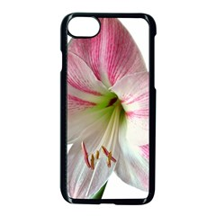 Flower Blossom Bloom Amaryllis Apple Iphone 7 Seamless Case (black) by Nexatart