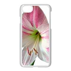 Flower Blossom Bloom Amaryllis Apple Iphone 7 Seamless Case (white)