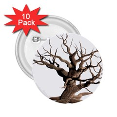 Tree Isolated Dead Plant Weathered 2 25  Buttons (10 Pack)  by Nexatart