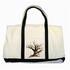 Tree Isolated Dead Plant Weathered Two Tone Tote Bag by Nexatart